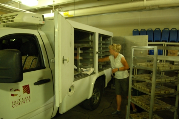 Volunteer driver Moana Edwards loads her truck to get ready for her route. Meals on Wheels have 12 or more trucks going out on various routes each day. Photo by Matt Garner||