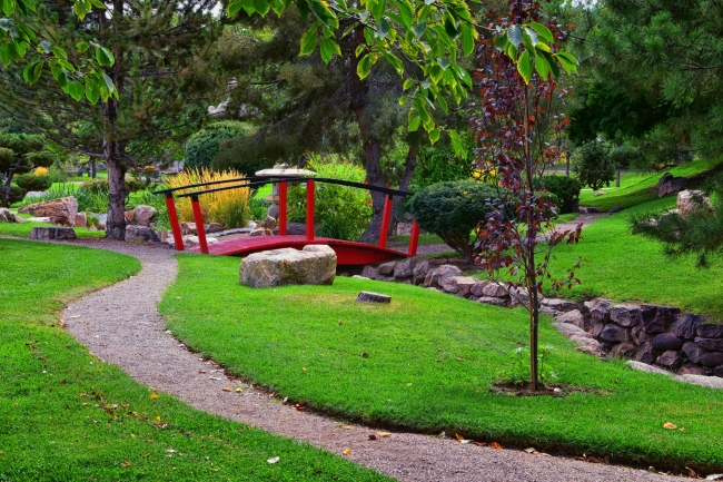 """Volunteer """"Friends of"""" groups make huge difference in quality of parks"""
