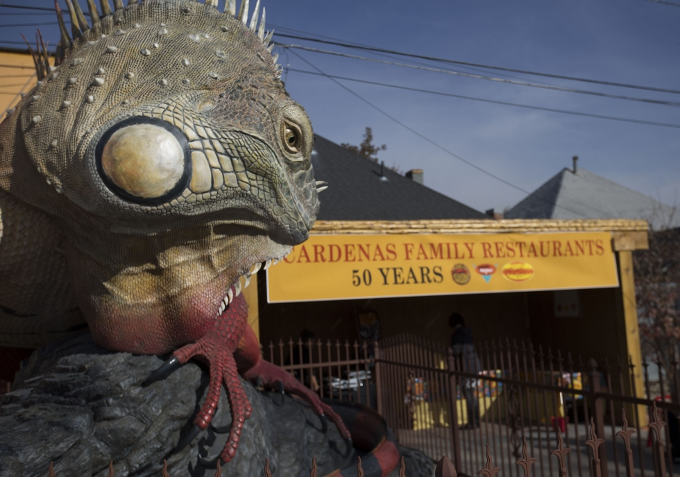 A huge scaly newcomer made its way to Salt Lake City's west side on Halloween