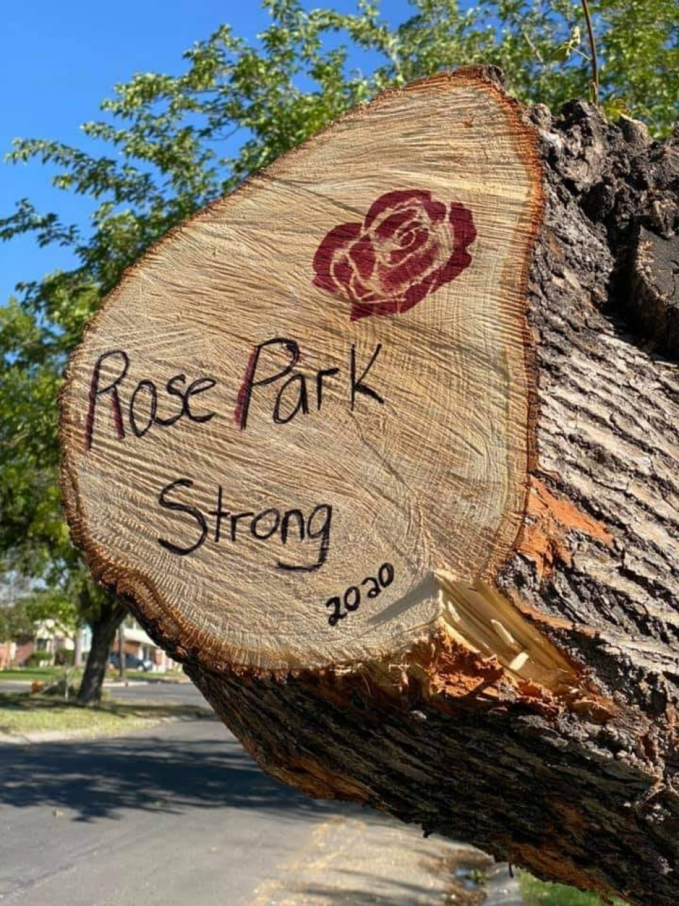 In Rose Park, impact of wind storm went beyond downed trees